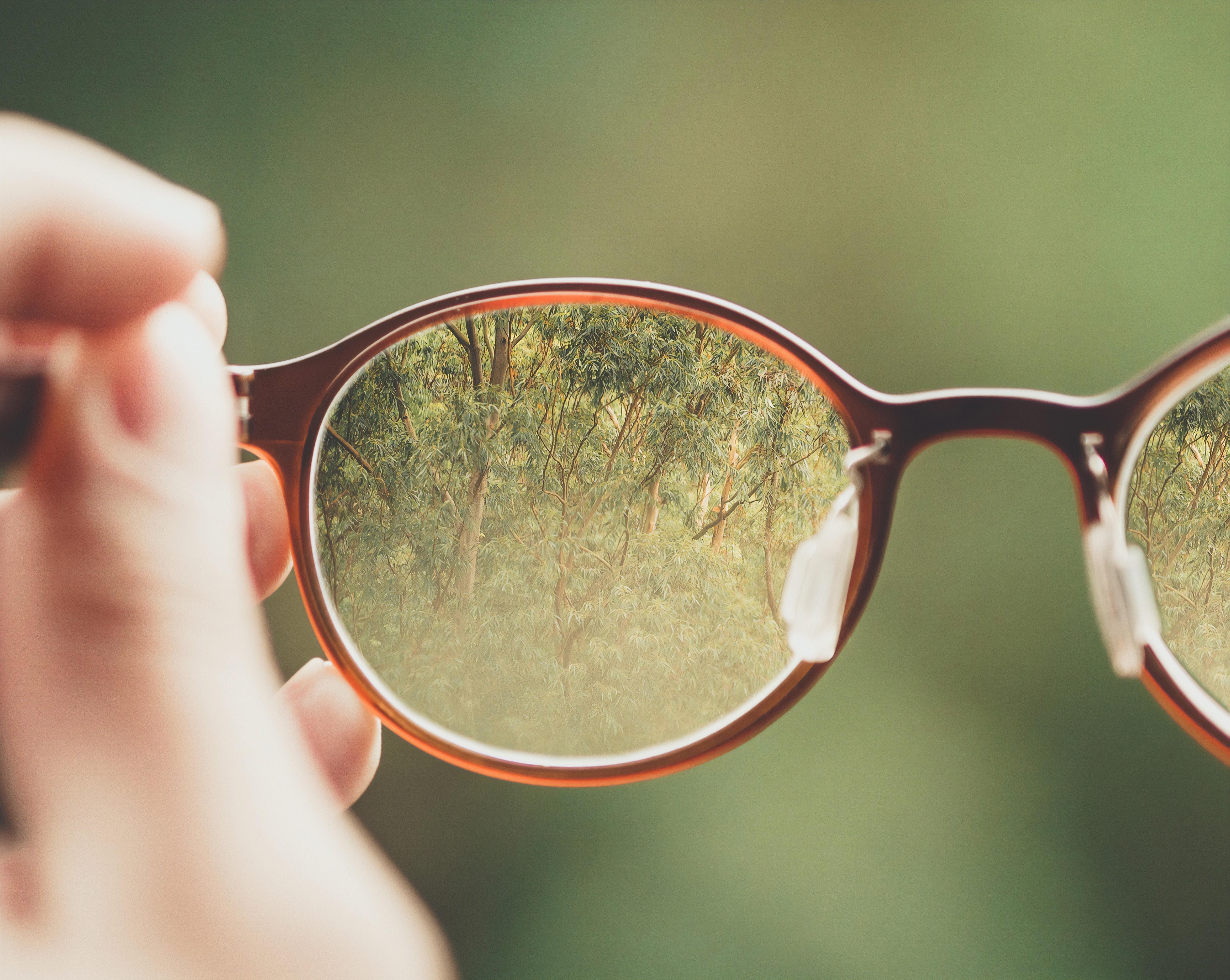 Vision and Eyewear